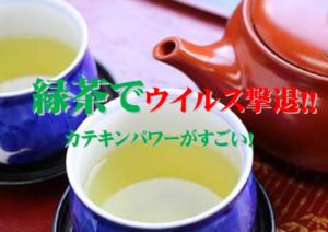 ウイルス 緑茶 コロナ