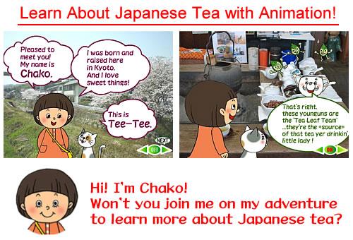 Grüner Tee - Alles über japanischen Tee